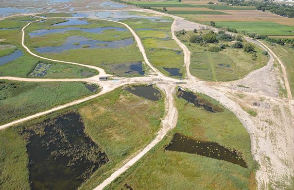 costructed wetland